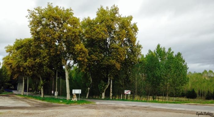 Vila Verde de Raia_fronteira5