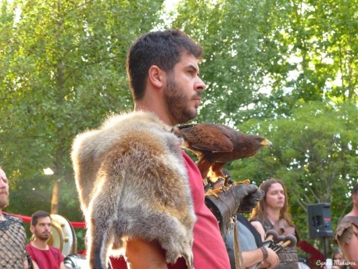 Festa dos Povos_Chaves_gladiadores (19)