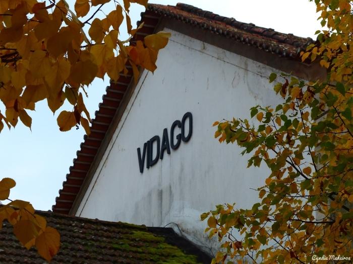 Estaçao de Vidago_antes (11)
