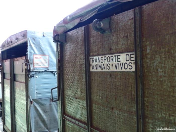 Feira dos Santos_Chaves (16)