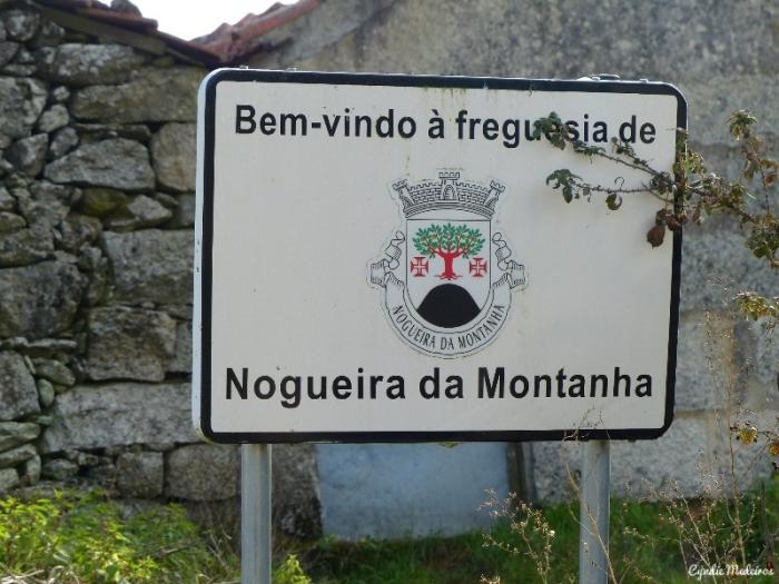 Nogueira da Montanha (1)