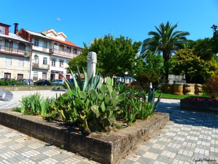 Jardim do Bacalhau_Chaves (10)