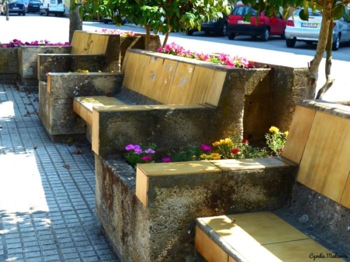 Jardim do Bacalhau_Chaves (11)