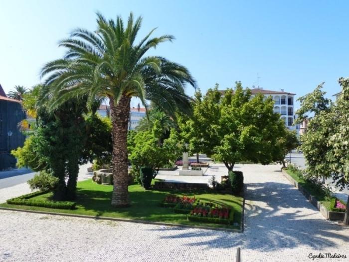 Jardim do Bacalhau_Chaves (3)