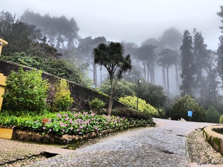 Palacio de Pena_Sintra (1)