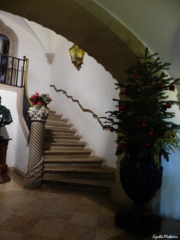 Palacio de Pena_Sintra (15)