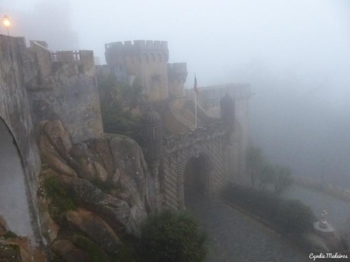 Palacio de Pena_Sintra (21)