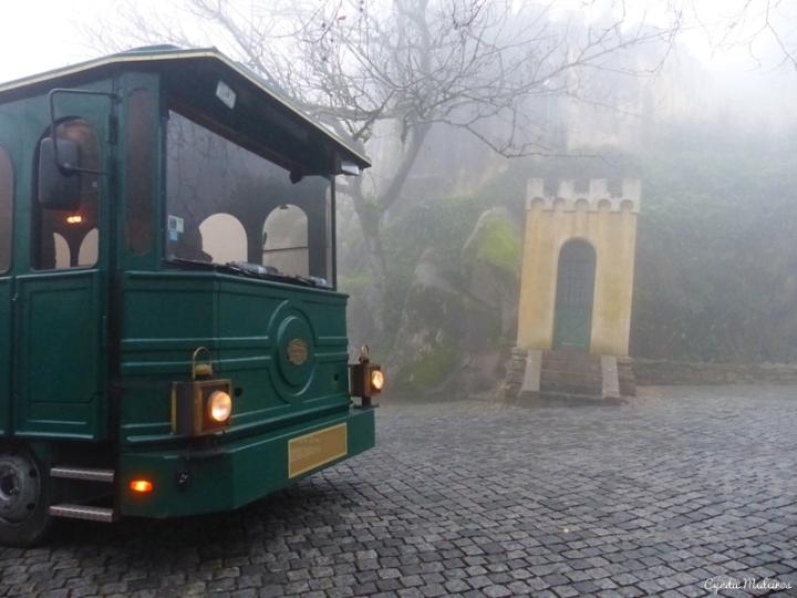 Palacio de Pena_Sintra (3)