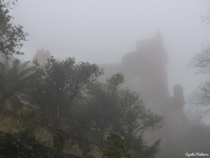 Palacio de Pena_Sintra (5)