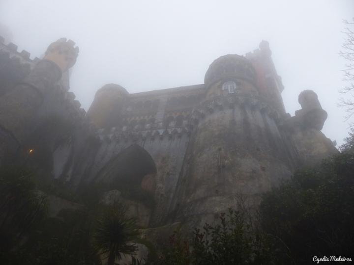 Palacio de Pena_Sintra (6)