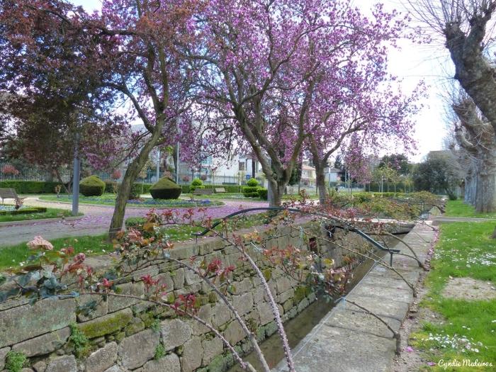 Jardim publico de Chaves (3)
