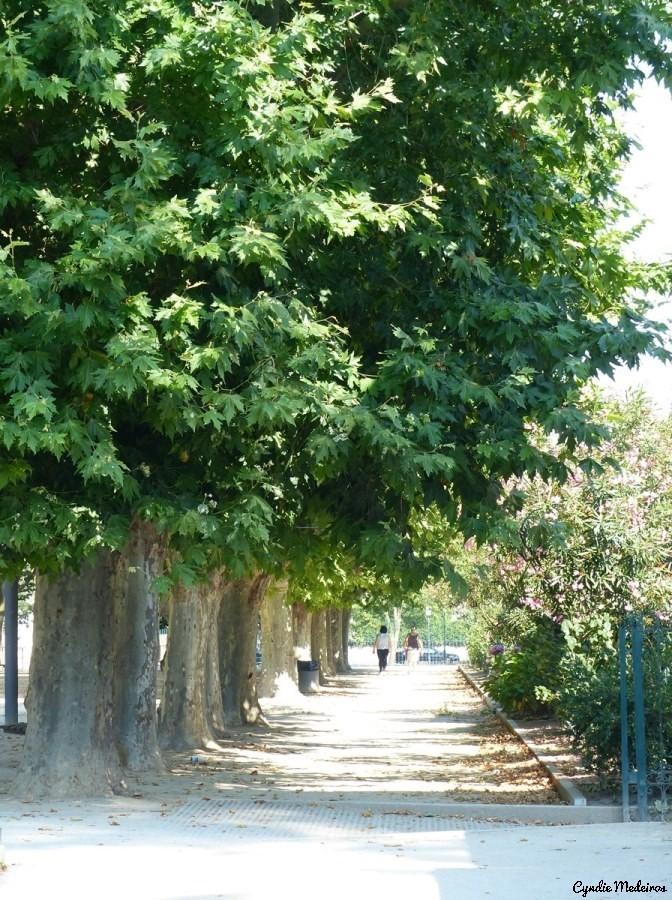 Jardim publico de Chaves (6)