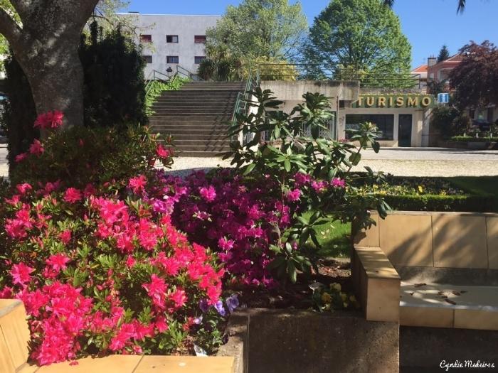 Primavera_Chaves_Portugal (22)