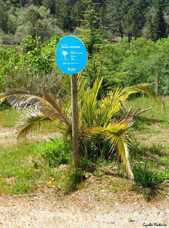 Rebentao Parque Quinta_Chaves (27)