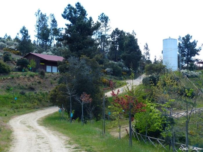 Rebentao Parque Quinta_Chaves (29)