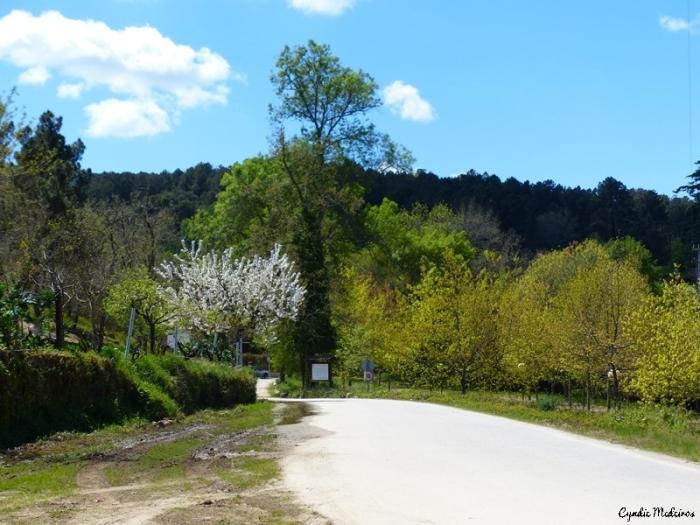 Rebentao Parque Quinta_Chaves (8)