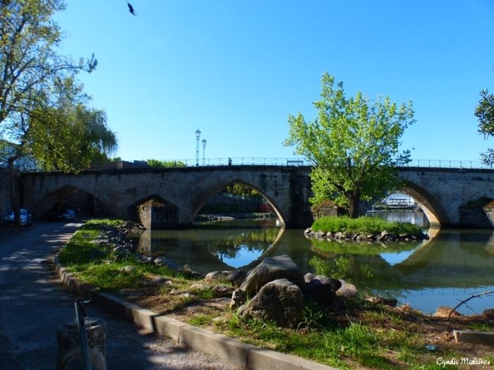 Ponte de Mirandela (17)