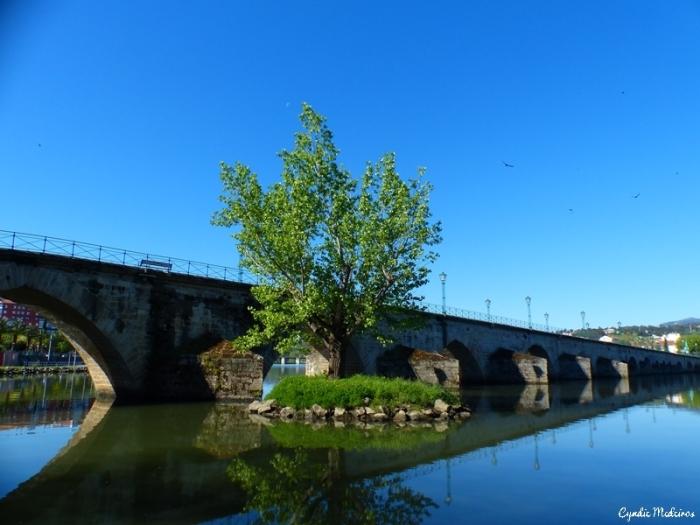 Ponte de Mirandela (19)