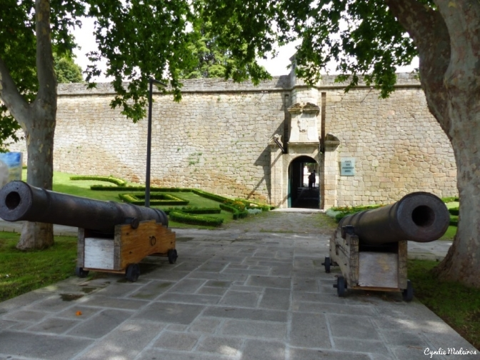 Forte Sao Francisco_Chaves (13)