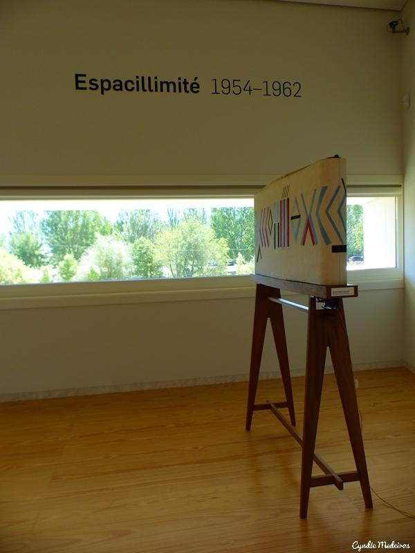 Museu Nadir Afonso_Chaves (18)