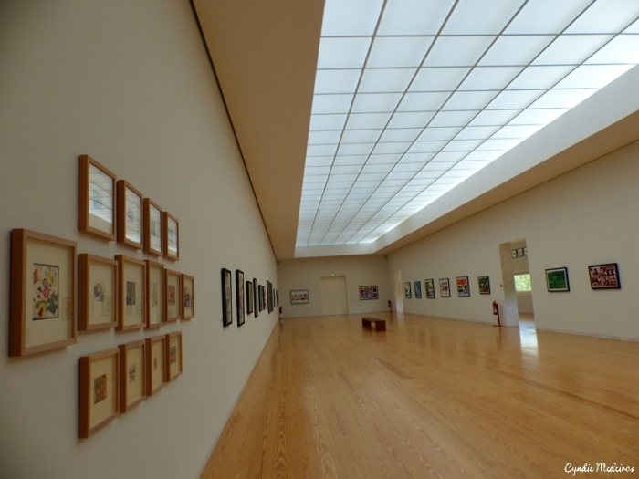 Museu Nadir Afonso_Chaves (23)