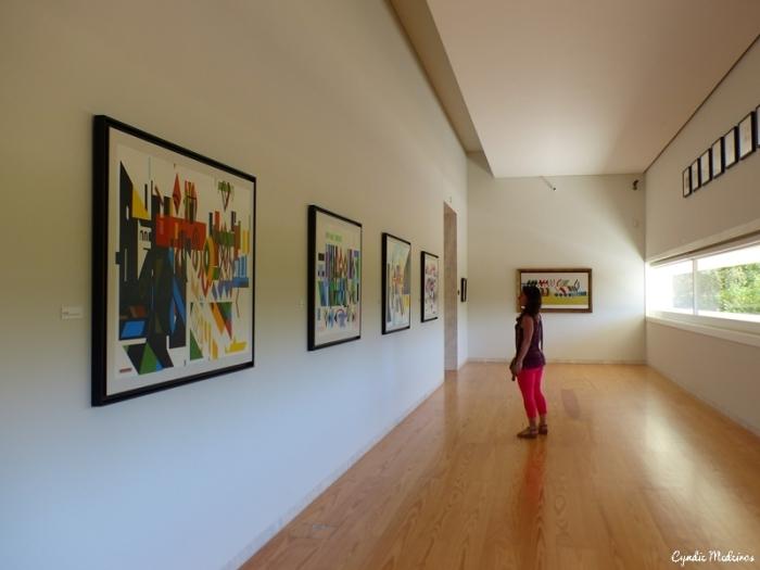 Museu Nadir Afonso_Chaves (26)