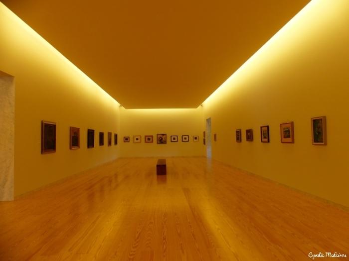 Museu Nadir Afonso_Chaves (35)