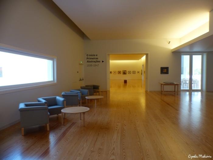Museu Nadir Afonso_Chaves (36)