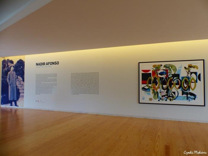 Museu Nadir Afonso_Chaves (4)