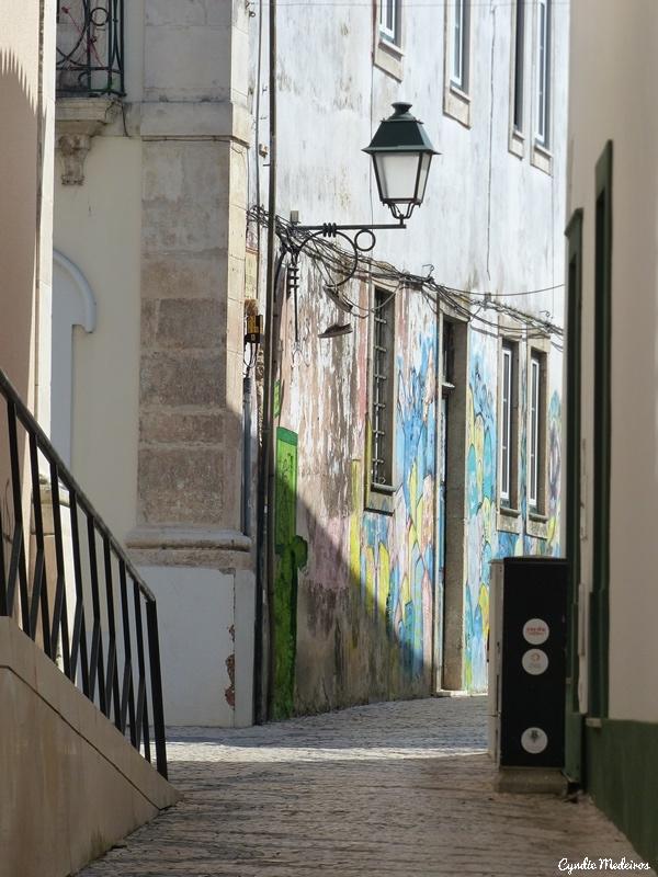 Aveiro_Portugal (10)