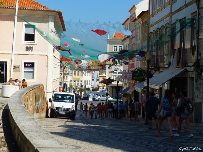 Aveiro_Portugal (15)