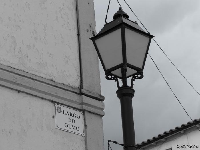 largo-do-olmo_vidago-18